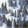 snow dbl 2